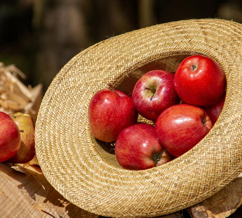 Obst Lieferservice Essen